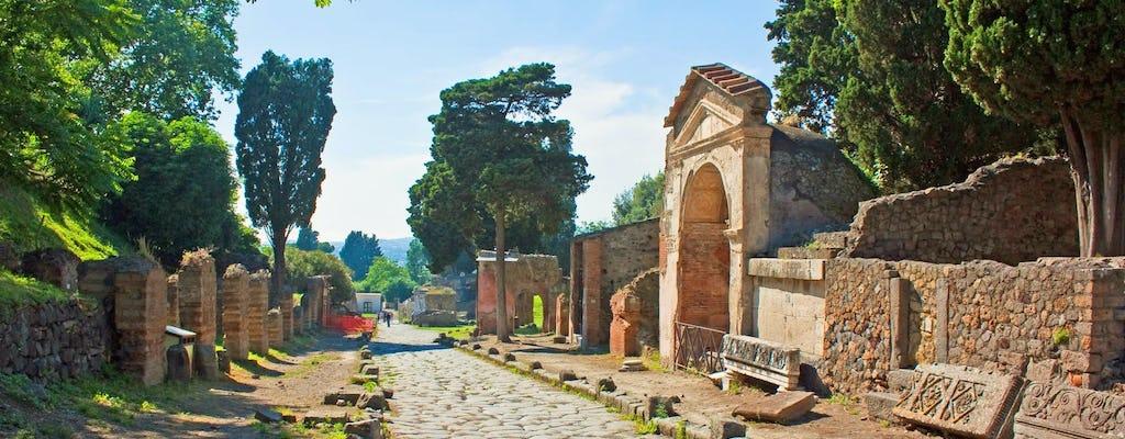 Wycieczka do Pompejów i Herkulanum z Neapolu