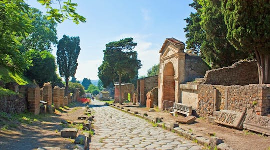 Daily excursion to Pompeii and Herculaneum from Naples