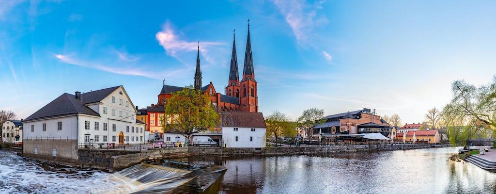 Excursão privada de meio dia a Uppsala e Sigtuna