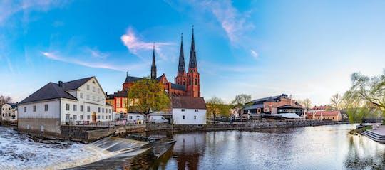 Tour privado de medio día a Uppsala y Sigtuna