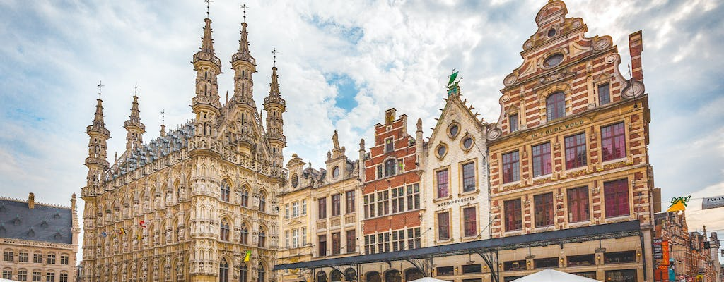 Private tour by bus in Leuven from Brussels