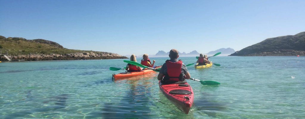 Trollfjord cruise and guided kayak tour
