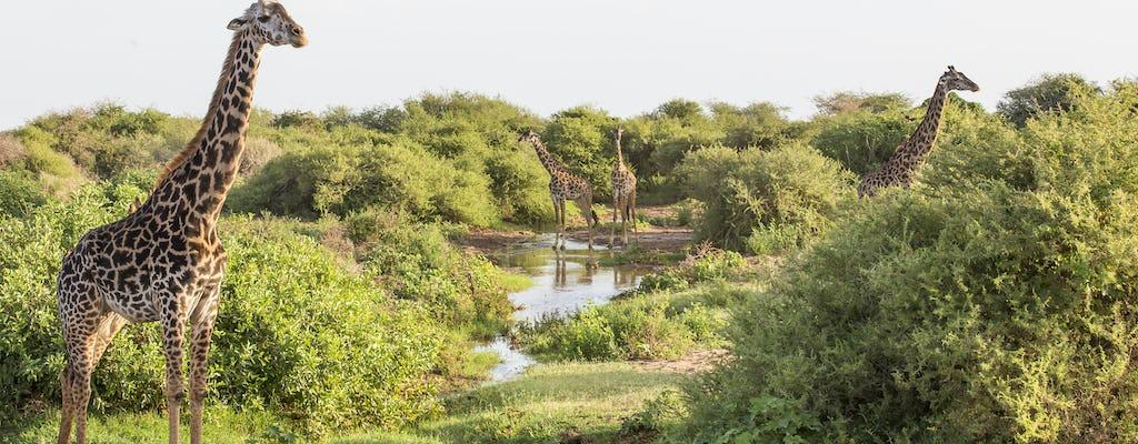Canoagem no Parque Nacional do Lago Manyara de Arusha