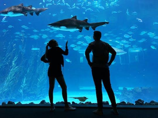 Billet pour l'aquarium Poema del Mar