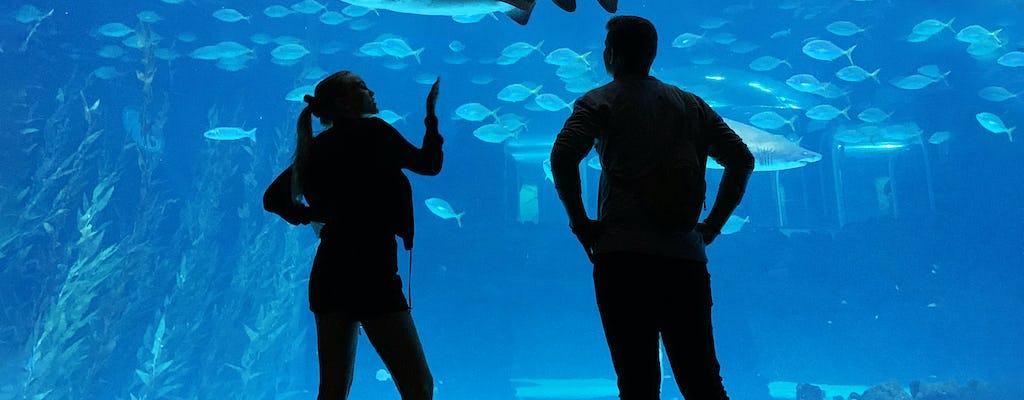 Akwarium Poema del Mar