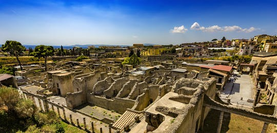 Herculaneum entrance tickets with optional guided tour