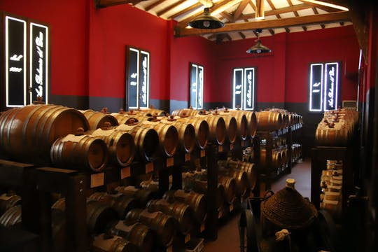 Tasting tour of balsamic vinegar of Modena at Aceto Balsamico del Duca