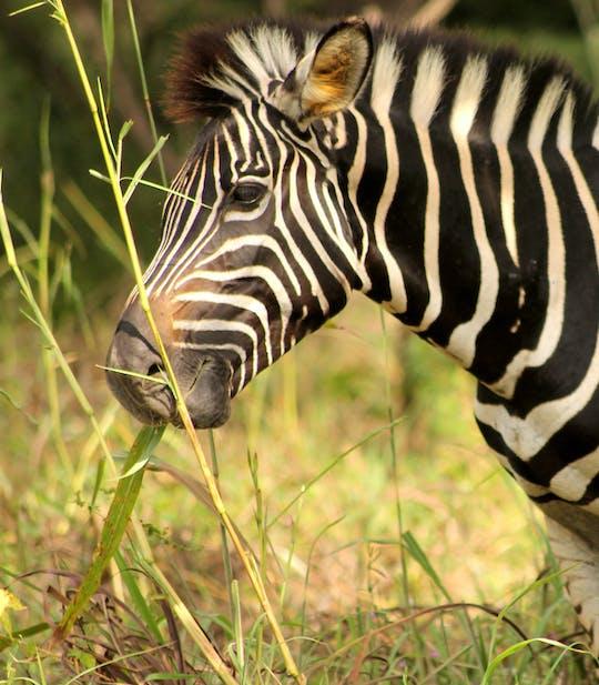 Fathala Wildlife Reserve  full-day tour