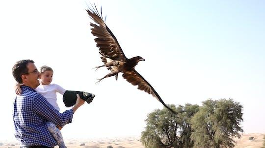 Dubai falconry safari with optional breakfast