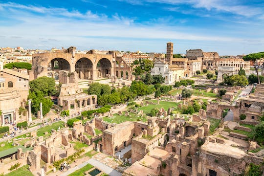 Roman Forum and Palatine Hill tickets with Colosseum express tour
