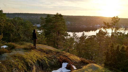 Enjoy a summer hiking adventure in Stockholm