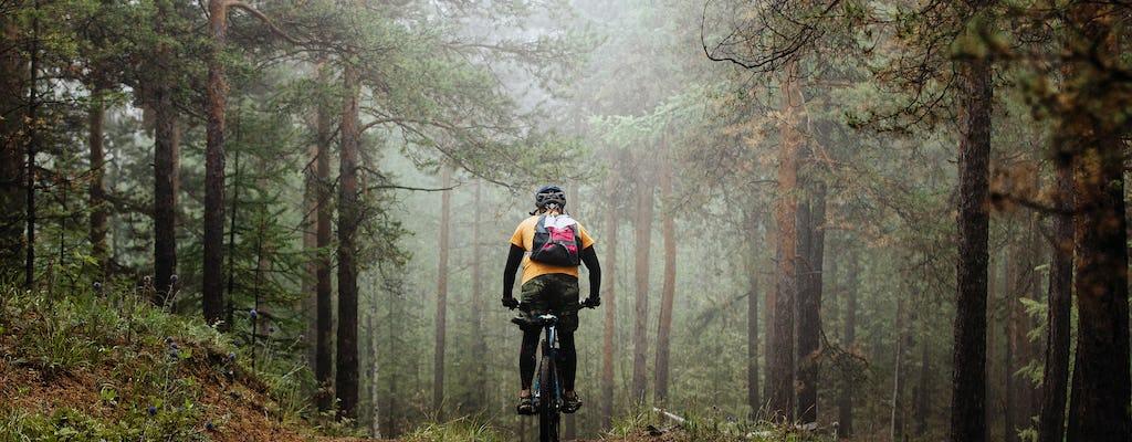 Aventura en bicicleta de montaña en el bosque sueco