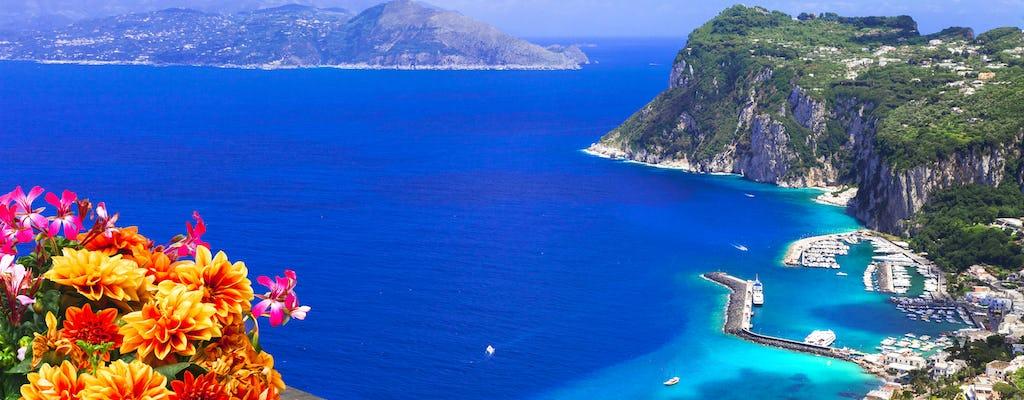 Pompeii and Capri boat tour