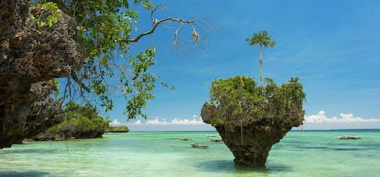 Tour privado de la isla de Uzi