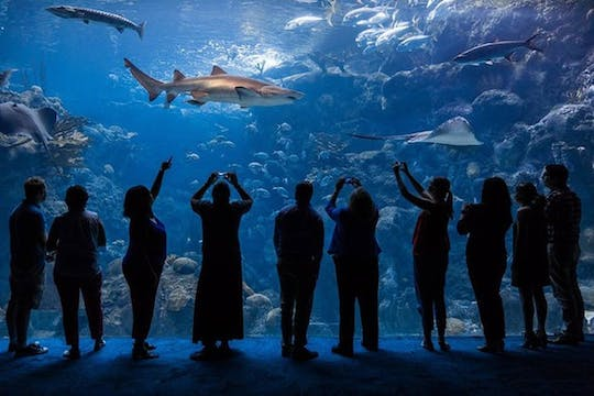 Tickets to ZooQuarium in Tampa