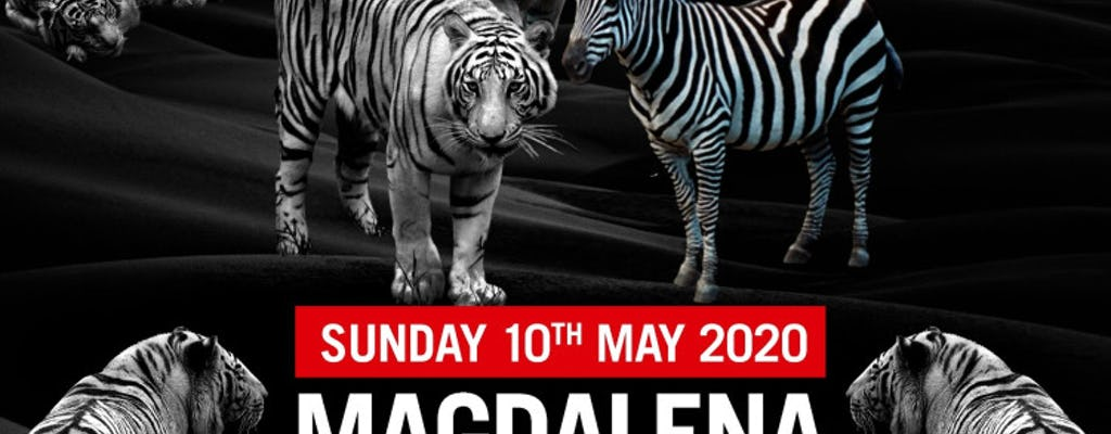 Magdalena - The Zoo Project