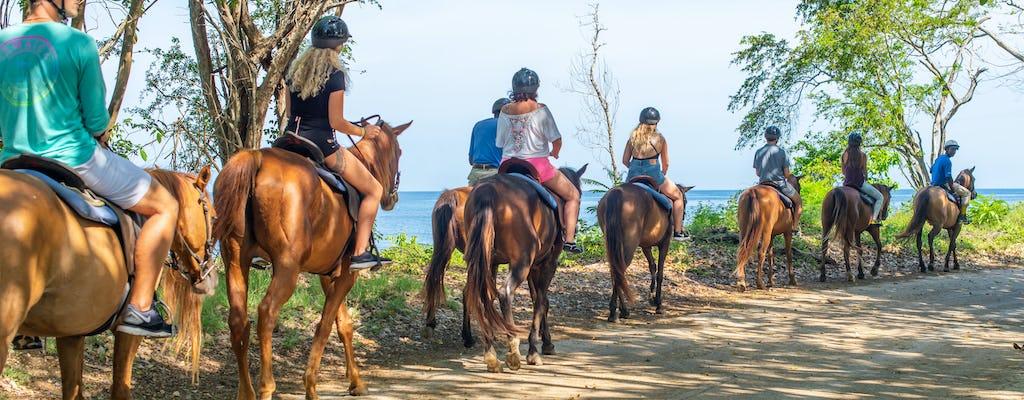 Paardrijden en Zwemmen in de Cariben