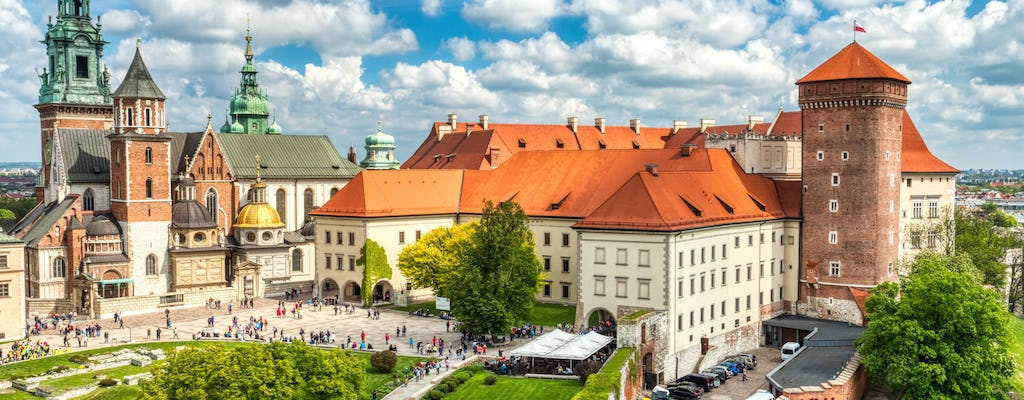 Wawel Castle and Wawel Hill guided tour