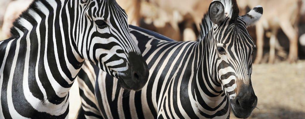 Billet pour Oasis Wildlife Fuerteventura