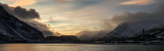 Admire um belo cruzeiro ao pôr do sol sobre o Fiorde de Alta