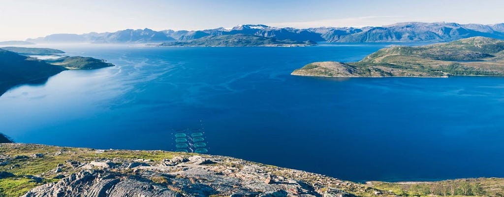 Enjoy an adventure cruise on Alta Fjord