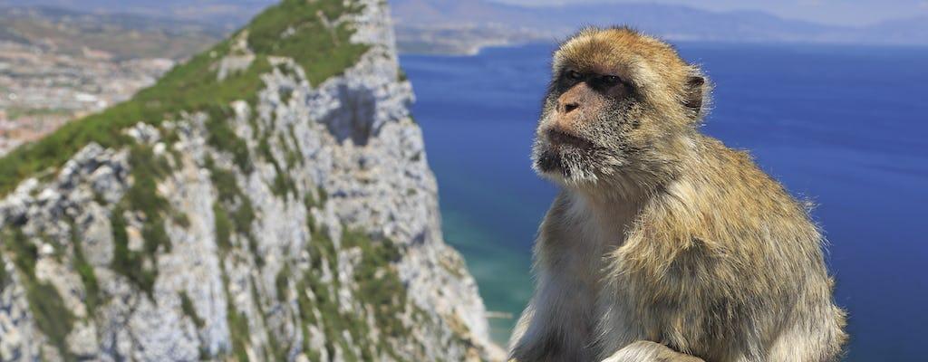 Gibraltar Premium