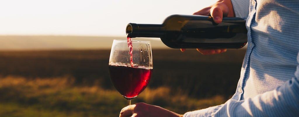 Wycieczka po winie i jodze w Bordeaux