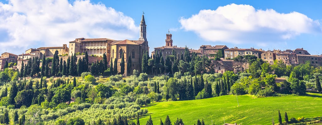 Private day trip to Val d'Orcia