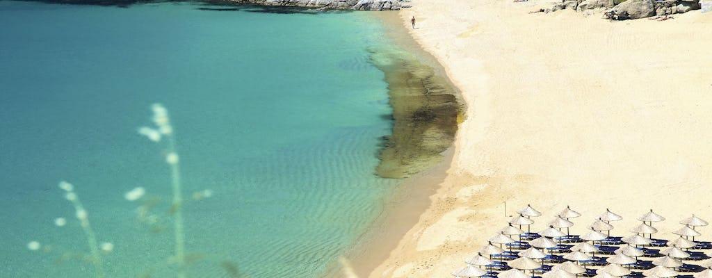 Lazy Cruise to Paradise Beach