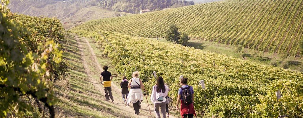 Trekking en el viñedo con cata de vinos y almuerzo en Podere Casanova
