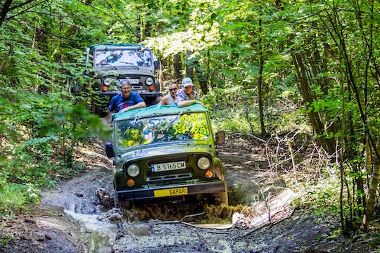Off-Road Forest Adventure