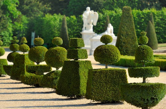 Versailles Palace and Musical Gardens with transfer from Paris