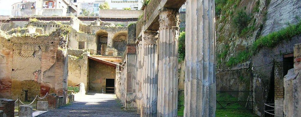 Visita guiada a Herculano con un arqueólogo