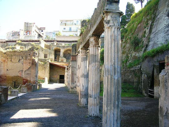 Herculaneum guided tour with an archeologist