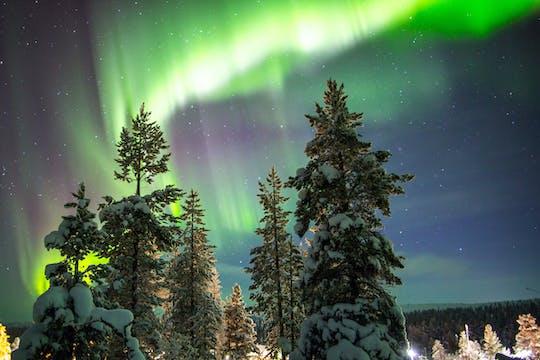 Охота за северным сиянием во время экскурсии на снегоходах с пикником