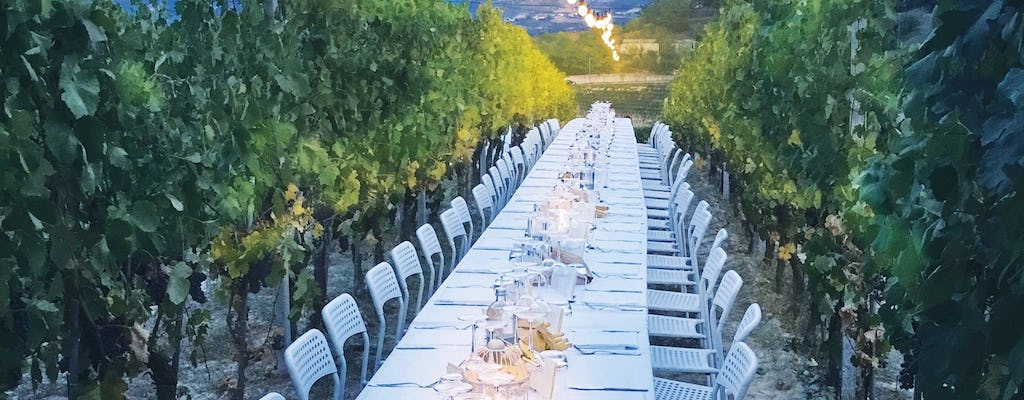 Wine tasting and meal in the vineyard of Podere Casanova