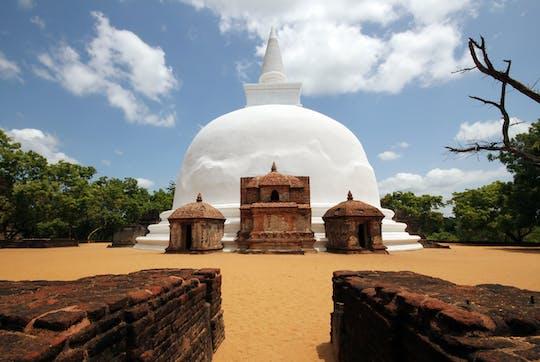 Gita di un giorno a Polonnaruwa da Negombo