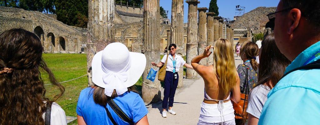 Excursión a Pompeya y Vesubio desde Sorrento