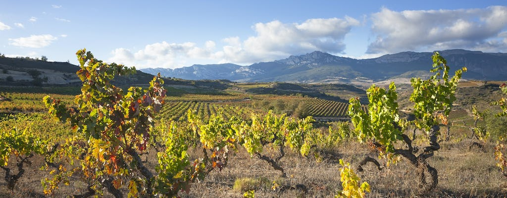 Full-day tour to La Rioja with wine tasting and lunch from Logroño