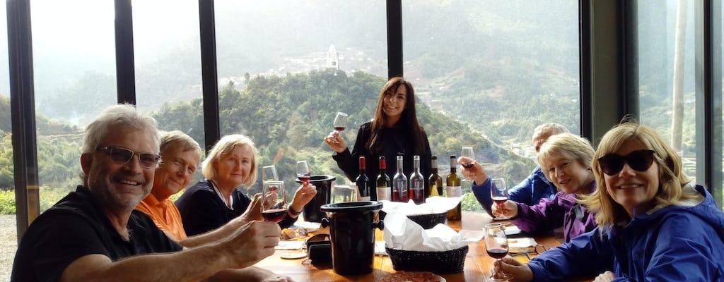 Tour de viñedos y cata de vinos en Madeira