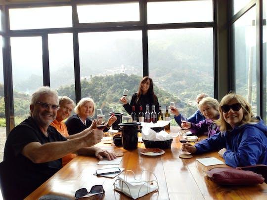 Madeira Wine Tastings + Vineyards & Skywalk Full Day Tour in Open Roof 4x4