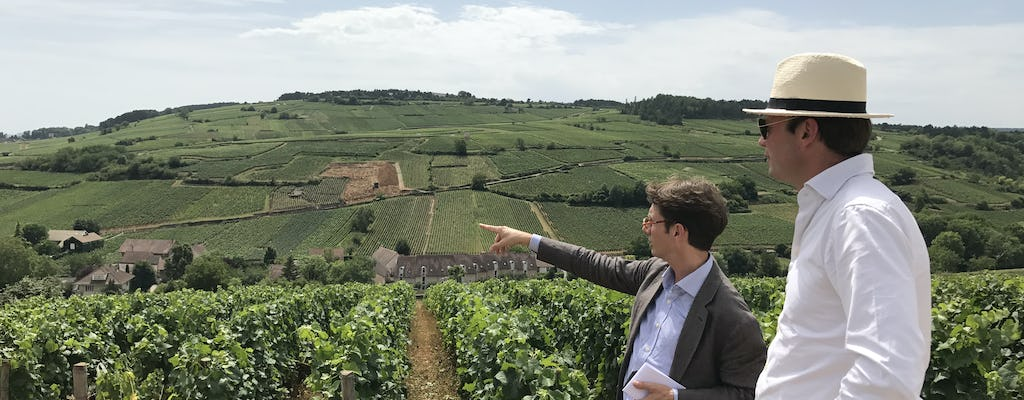 Half-day Burgundy tour from Beaune including lunch and wine tasting at family domain