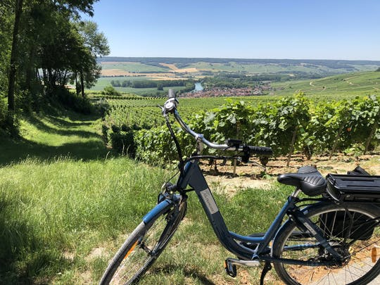 Full-day e-bike tour in Champagne and lunch