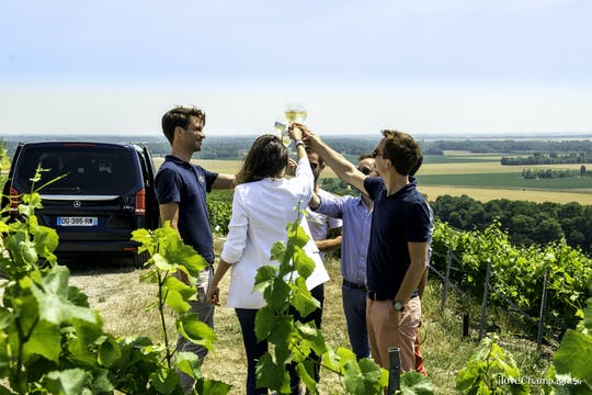 Afternoon Epernay and family growers tour