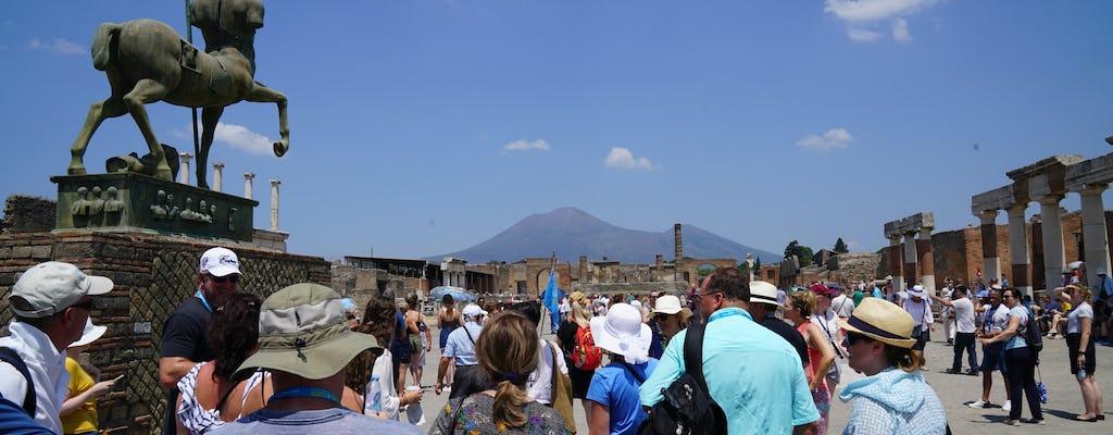 Zwiedzanie ruin Pompei z przewodnikiem z dostępem bez kolejki