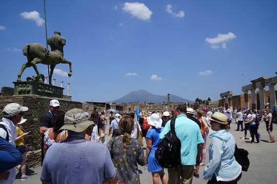 Guided walking tour of Pompeii ruins with skip-the-line access