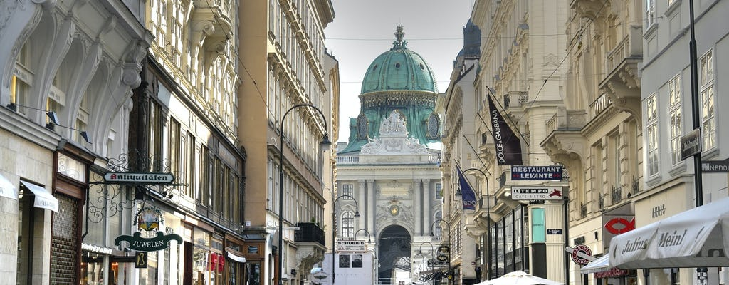 Prywatna wycieczka po Wiedniu z Pragi