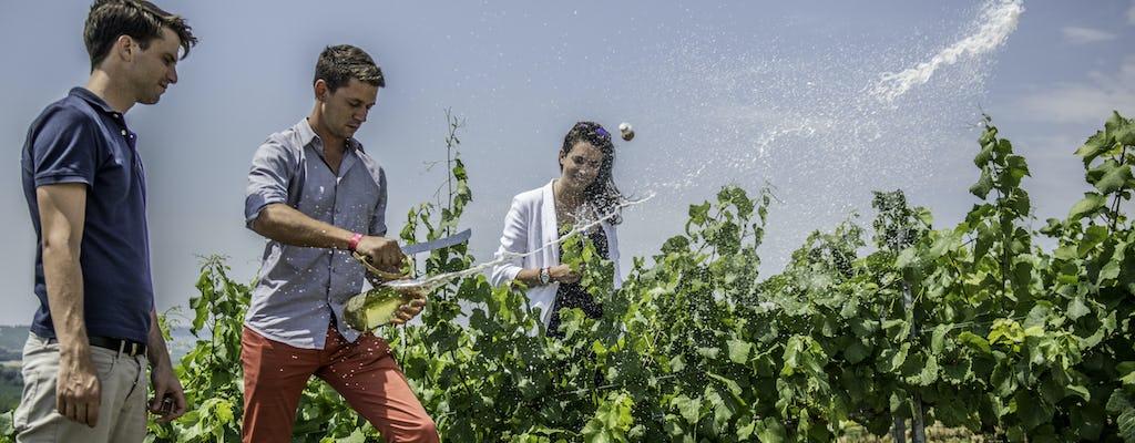 Moët & Chandon, excursão de um dia para agricultor familiar e almoço em Epernay
