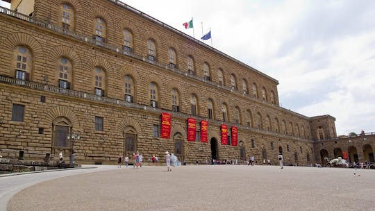 Pitti Palace semi-private guided tour