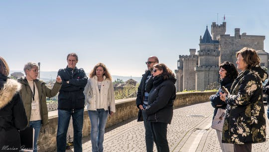 Small-tour group to Pamplona and Olite Royal Palace from Bilbao